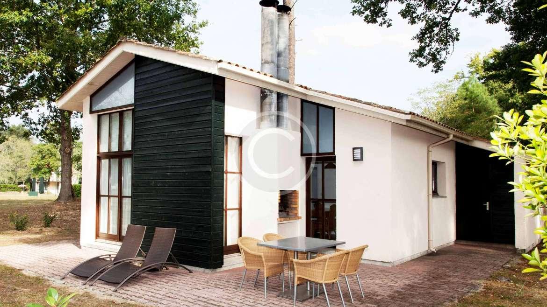 3 Urban Garden Ideas for Small Spaces